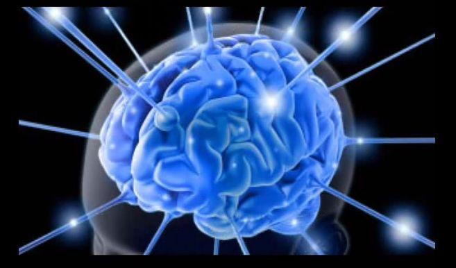 Cervello realtà