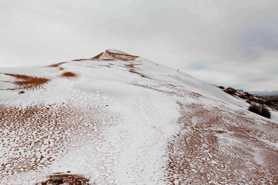 Deserto del Sahara la nevicata che ha stupito tutti Le Foto 3