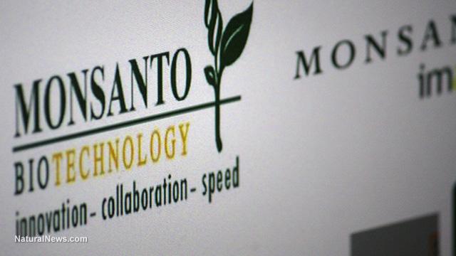 Monsanto sotto processo per crimini contro l'umanità e l'ambiente