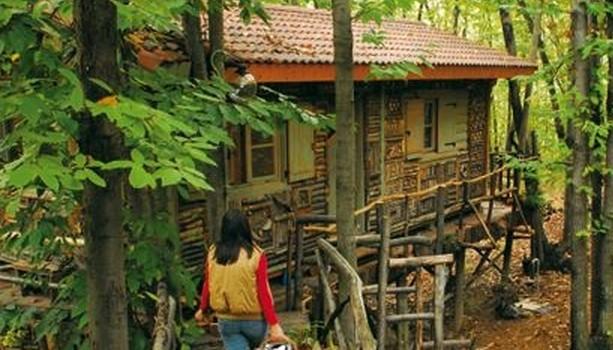 Villaggio case sugli alberi Piemonte Monti Pelati