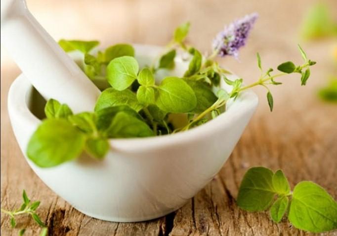 alternative naturali cortisone