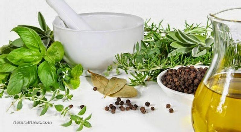 antibiotici naturali erbe cibi