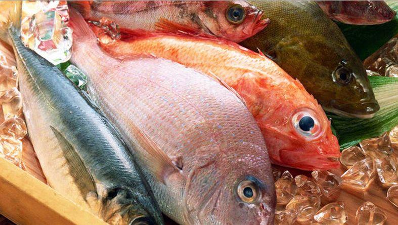 cibi contraffatti pesce