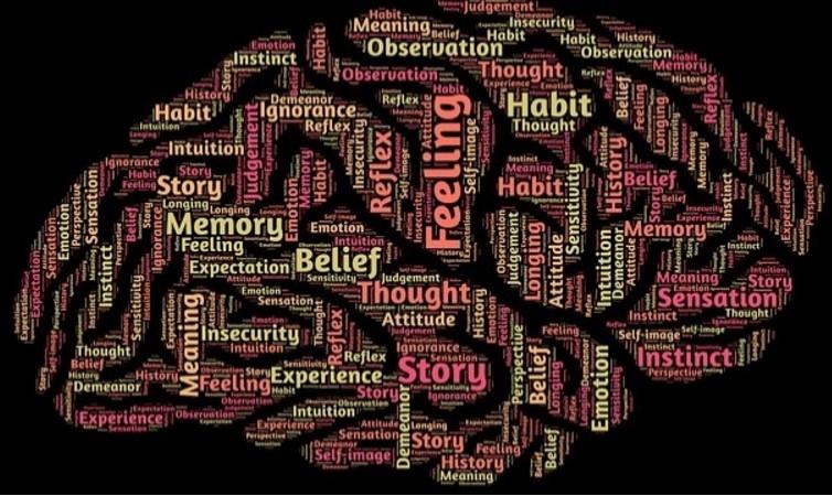 50 curiosità sul nostro cervello che non avresti mai immaginato.INTERESSANTISSIMO!