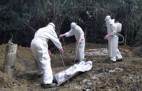 epidemia virus ebola batteri