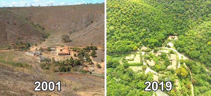 fattoria Bulcão di Aimorés, nello stato brasiliano di Minas Gerais differenze