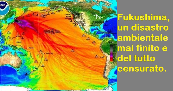 fukushima disastro ambientale