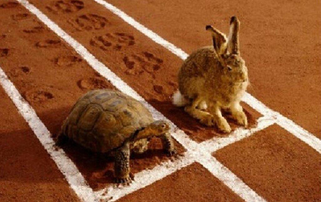 importanza della lentezza