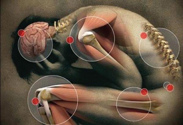 malattia anima corpo 2