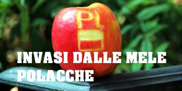 mele polacche