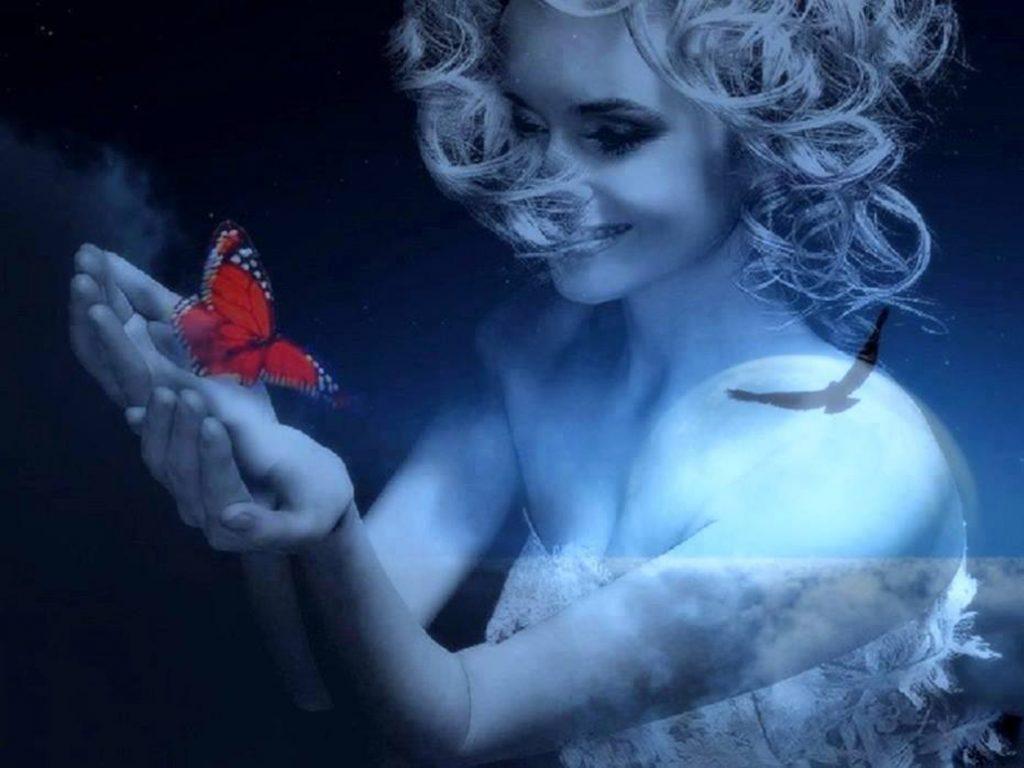 messaggi dal cielo farfalle