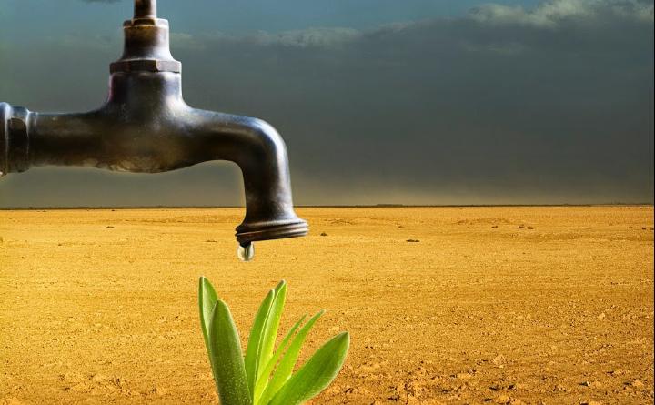 Ecco come Nestlè, Danone e Coca Cola si stanno rubando tutta l'acqua
