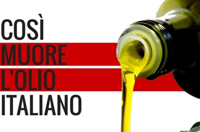 olio Tunisia olio tunisino ue dazio