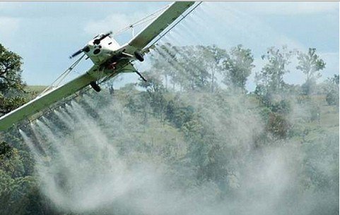 pesticida cancerogeno