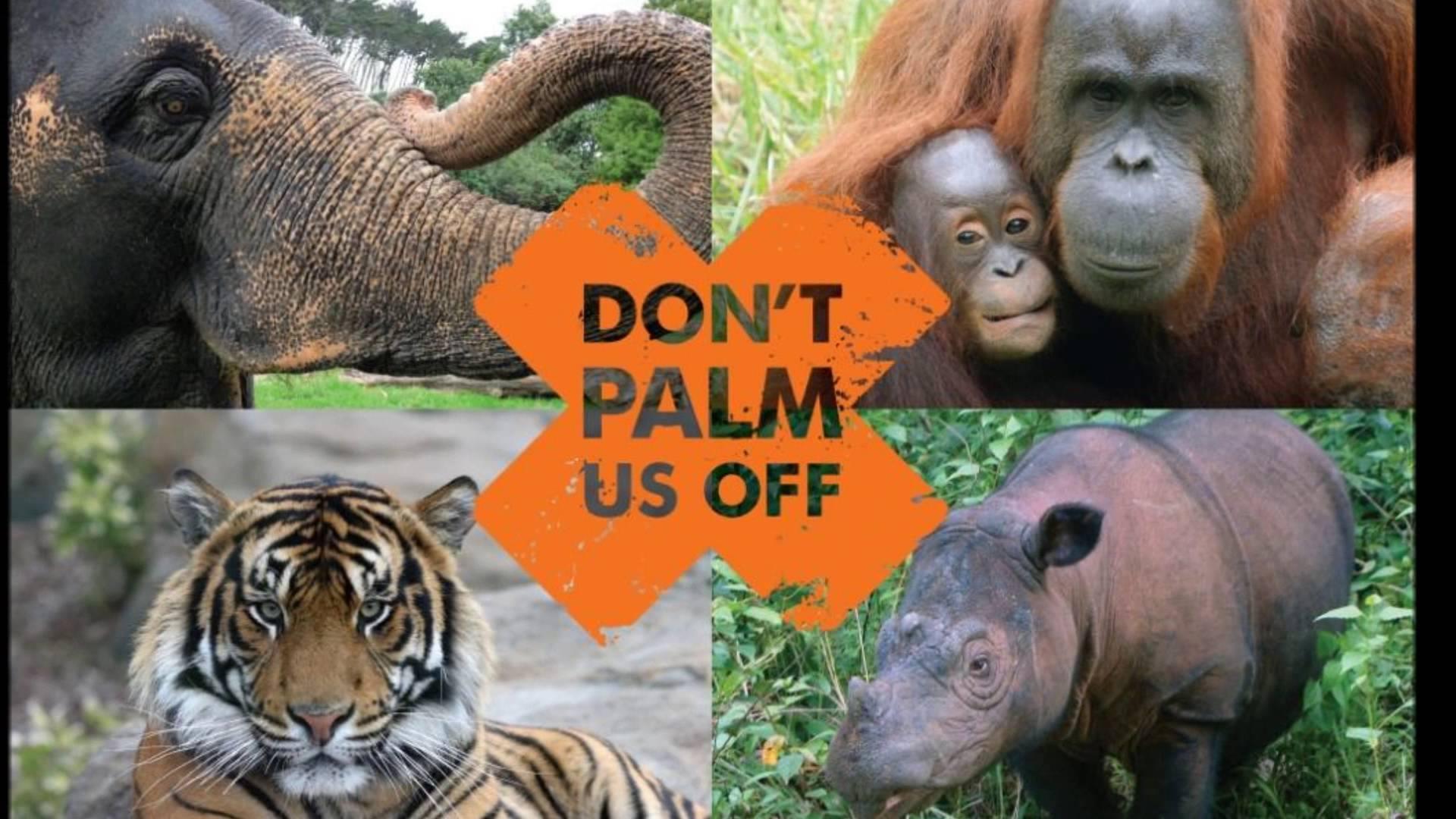pubblicità olio di palma sostenibile