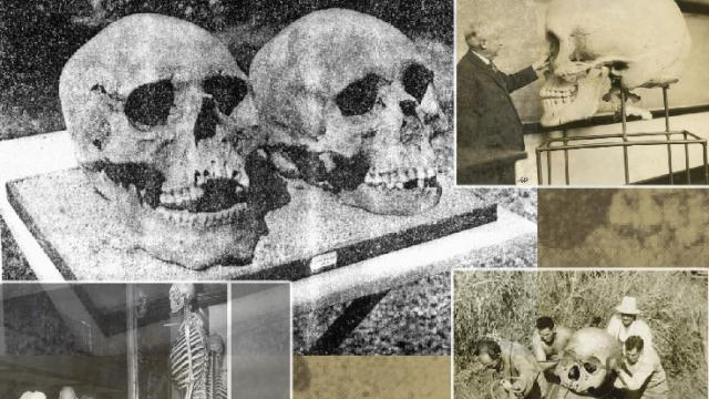 scheletri giganti crani lago delavan winsconsin