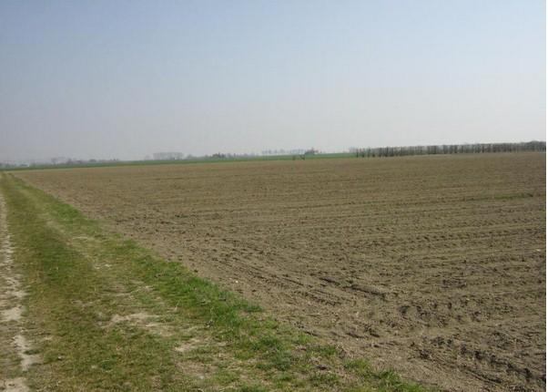 terreni agricoli improduttivi alluminio